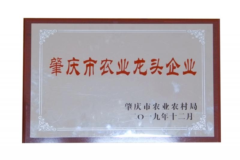 肇庆市农业龙头企业